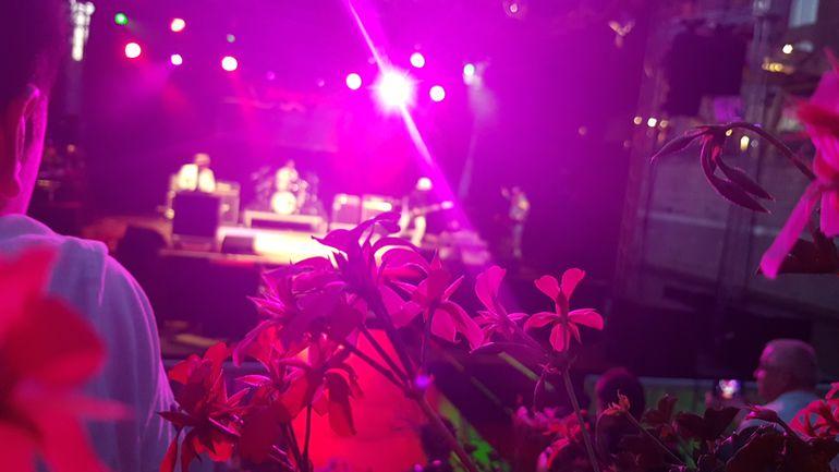 21.00 Uhr: Konzert beim Jungen Hafensommer Foto Schüler*in des Projektes ©MiK
