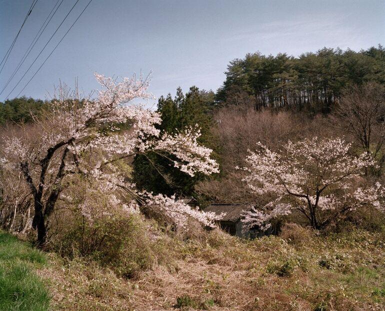 102 R. Knoth, A. de Jong, Warabidaira, Bezirk Soma, Präfektur Fukushima Foto ©deJong Knoth