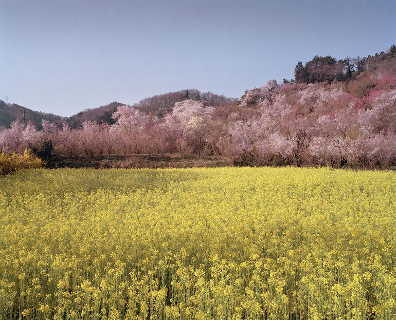 105 R. Knoh, A. de Jong, Fukushima Park, Präfektur Fukushima Foto und ©deJongKnoth
