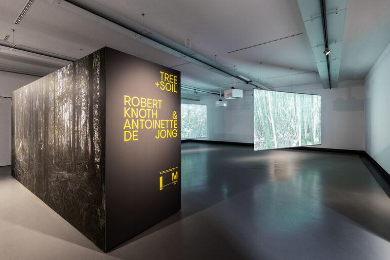 Ausstellungsraum Tree and Soil 2 Foto und ©Kiefer