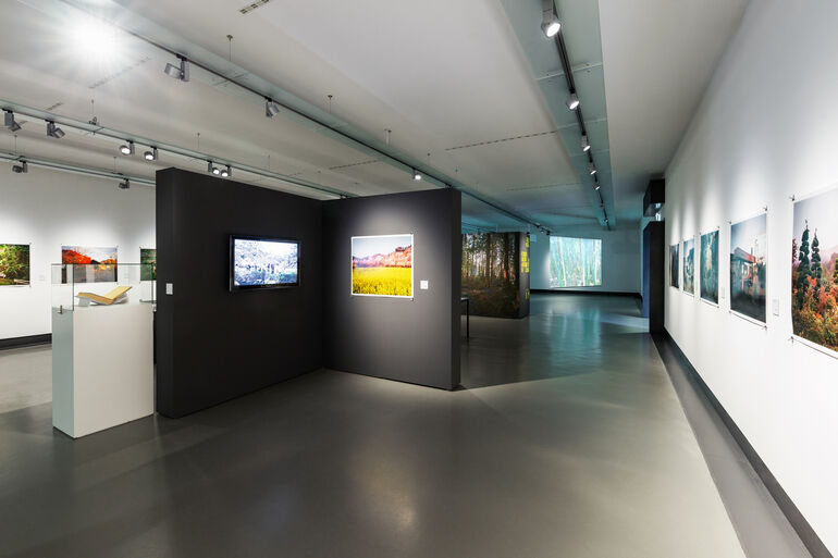 Ausstellungsraum Tree and Soil Foto und ©Kiefer